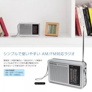 amfm_portable_radio2