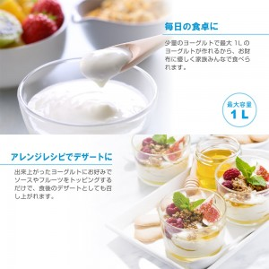 simple_yogurt_maker4