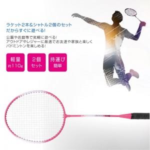 badminton_set2