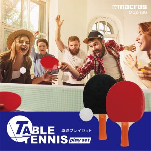 table_tennis_play_set1