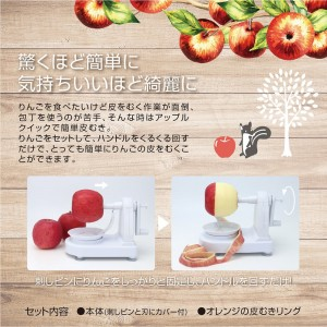 apple_quick2