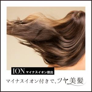 styling_hairbrush_iron_laxary4