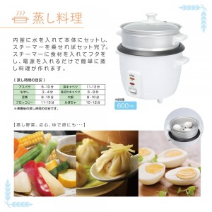 rice_steam_cooker_laracook4